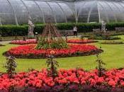 Jardín botánico Kew, colección grande mundo