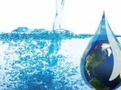 Cotización Agua Bolsa