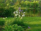 Jardín botánico Longwood, belleza para conocer
