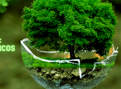 Tomando conciencia: Frases juegos ecológicos para niños