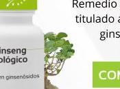 Ginseng: para sirve propiedades, beneficios, usos contraindicaciones