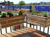 Decoración balcones jardines