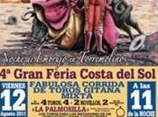 Flamenco Toros Torremolinos