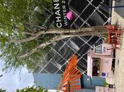 Miami transforma creatividad