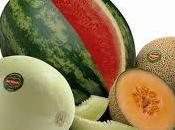 Alimentos transgénicos: posibles efectos adversos riesgos