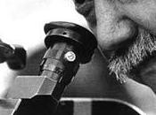 Muere cineasta chileno Raúl Ruiz
