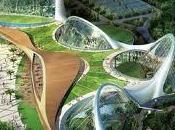 Corea Jardín Canario