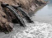 Contaminación agua (II) CONTAMINACIÓN AGUAS CONTINENTALES