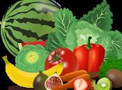 conejito Fito quiere comer verduras Cuento corto