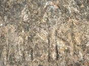 Piedra escrita Sierra Norte Guadalajara