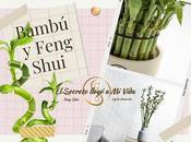 Bambú suerte