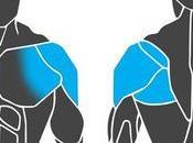 Cómo entrenar músculos hombro