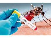 Encuentran compuesto neutraliza virus dengue