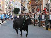 Anunciada suelta extraordinaria toro cuerda carcabuey para noviembre