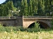 Ribera Duero Soria