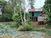 Macondo, Camboya
