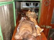Cuba: ¿Muertos frío, hambre, ambas cosas vez?