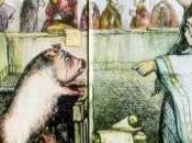 Animales cárcel
