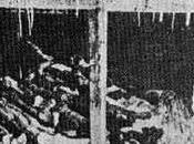 Escuadrón 731: horrores Auschwitz asiático