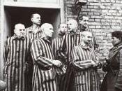 Polonia inicia última investigación sobre Auschwitz
