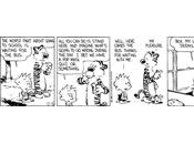 Calvin Hobbes, vaya genios