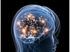 ¿Cómo entrenar cerebro para mejorar calidad vida evitar Alzheimer?
