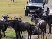 Safaris varios días Tanzania
