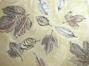 Cuadros hojas otoño