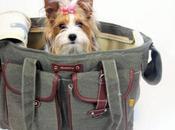 Bolsos para llevar mascota