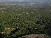 ¿Cuál origen 'Irse cerros Úbeda'?