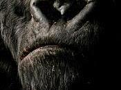 Recomendación semana: King Kong (Peter Jackson, 2005)