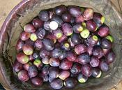 Aceitunas gordales sajadas