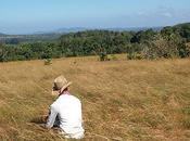 onduladas colinas Mondulkiri Camboya