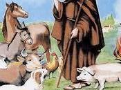 Antonio Abad animales