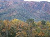 Southeast Great Smoky Mountains