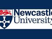 Becas Master Museso arte Newcastle 2012