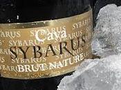 Sybarus Cava Brut Nature Palco Levante U.D.