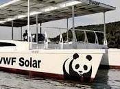 denuncia ataque directo renovables presentado Gobierno