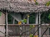 Cabana rustica tanzania