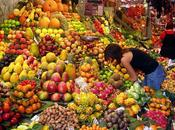 Nutrición salud
