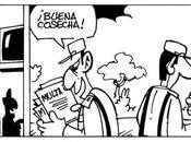 Primaveravalenciana.com