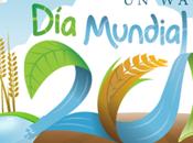 Mundial Agua 2012