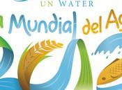 Marzo: Mundial Agua 2012