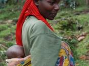 Ruanda, Selva, Sabana Volcanes